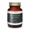 Inflammation - Douleurs - Boswellia Serrata
